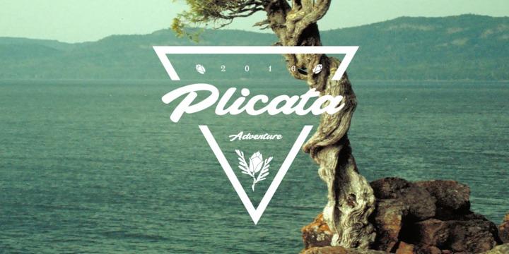 plicata1