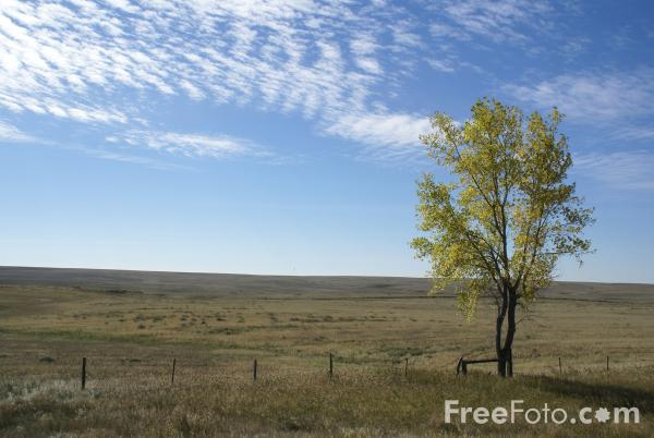 Fall Color Great Plains Montana USA pictures free use image 1223037 by FreeFotocom