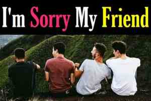 Sorry-Message-and-Quotes-For-Best-Friend-In-Hindi (2)