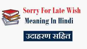 Sorry-For-Late-Wish-Meaning-In-Hindi (1)