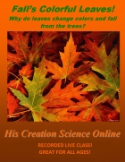 Free Creation Science Class