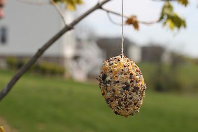 Plastic Egg Bird Feeder