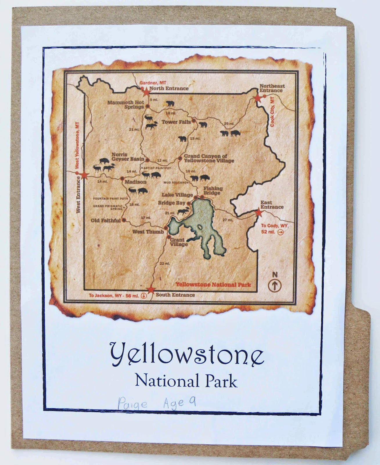 Free Yellowstone National Park Lapbook