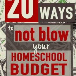 20 Ways to NOT BLOW Your Homeschool Budget