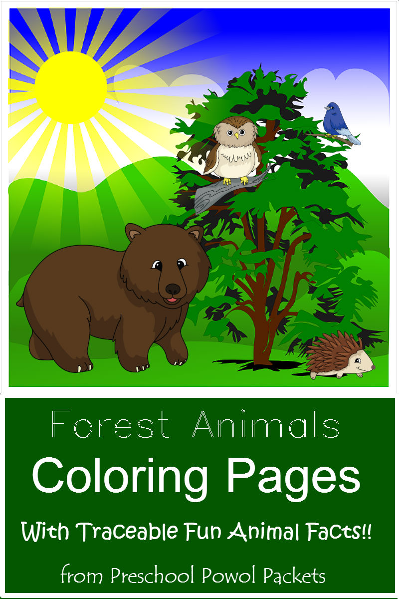free forest animal coloring pages  free homeschool deals