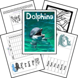 FREE Dolphin Lapbook And Unit Study