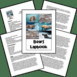 FREE Bears Lapbook
