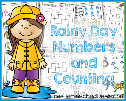 Rainy Day Numbers and Counting Packet