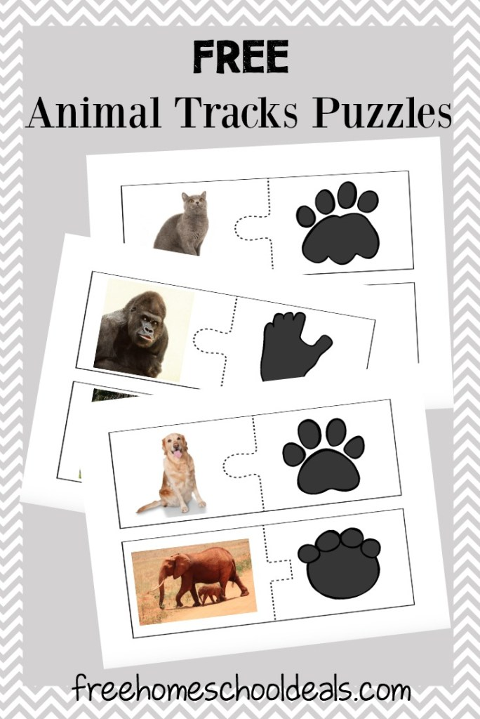 Animal Tracks Puzzles