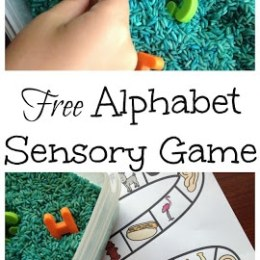 FREE Beginning Sounds Sensory Game