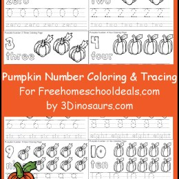 FREE PUMPKIN TRACE AND COLOR SET (Instant Download)
