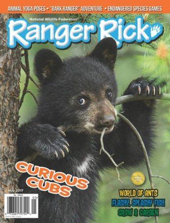 Ranger Rick Magazine Only $11.99/Yr!