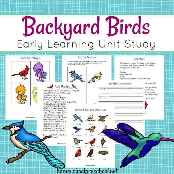 Free Backyard Birds Preschool Unit Study