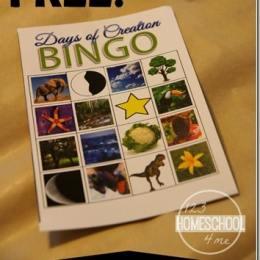 Free Days of Creation BINGO Printables
