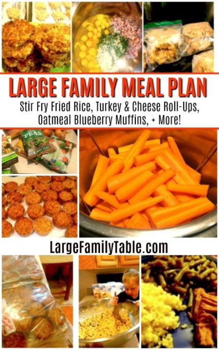 WEEKLY LARGE FAMILY MEAL PLAN: Stir Fry Fried Rice, Turkey & Cheese Roll-Ups, Oatmeal Blueberry Muffins, + More!