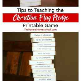Free Christian Flag Pledge Game