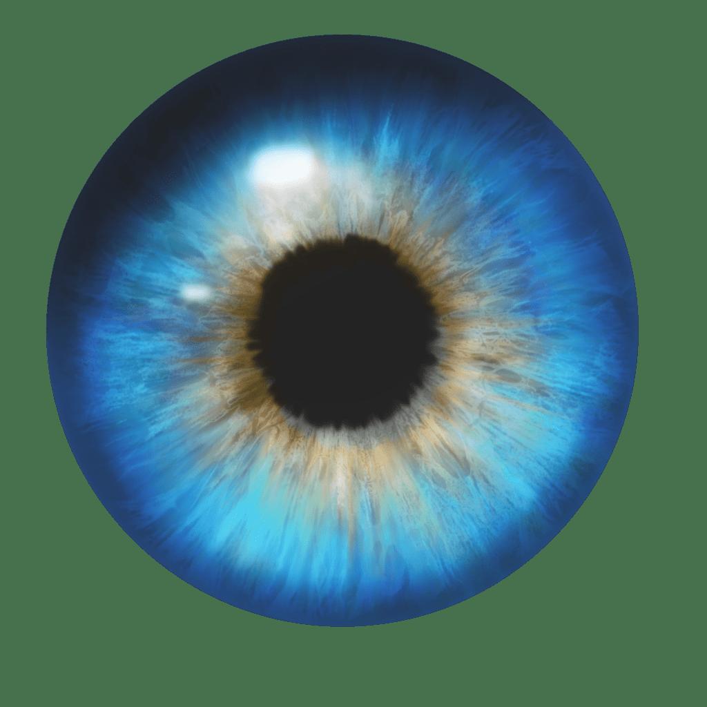 Tumblr Overlays Transparent Camera