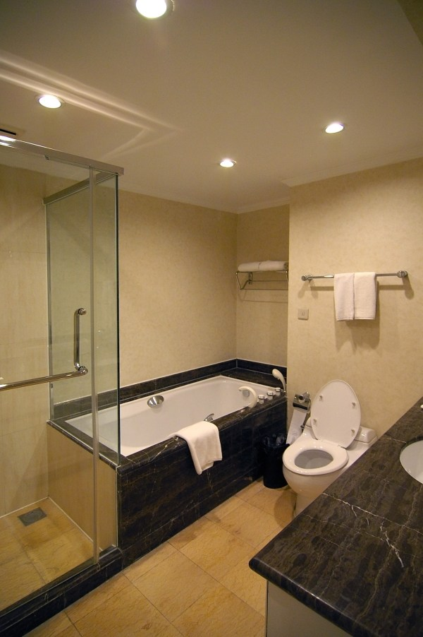 Hotel Room Bathroom Designs