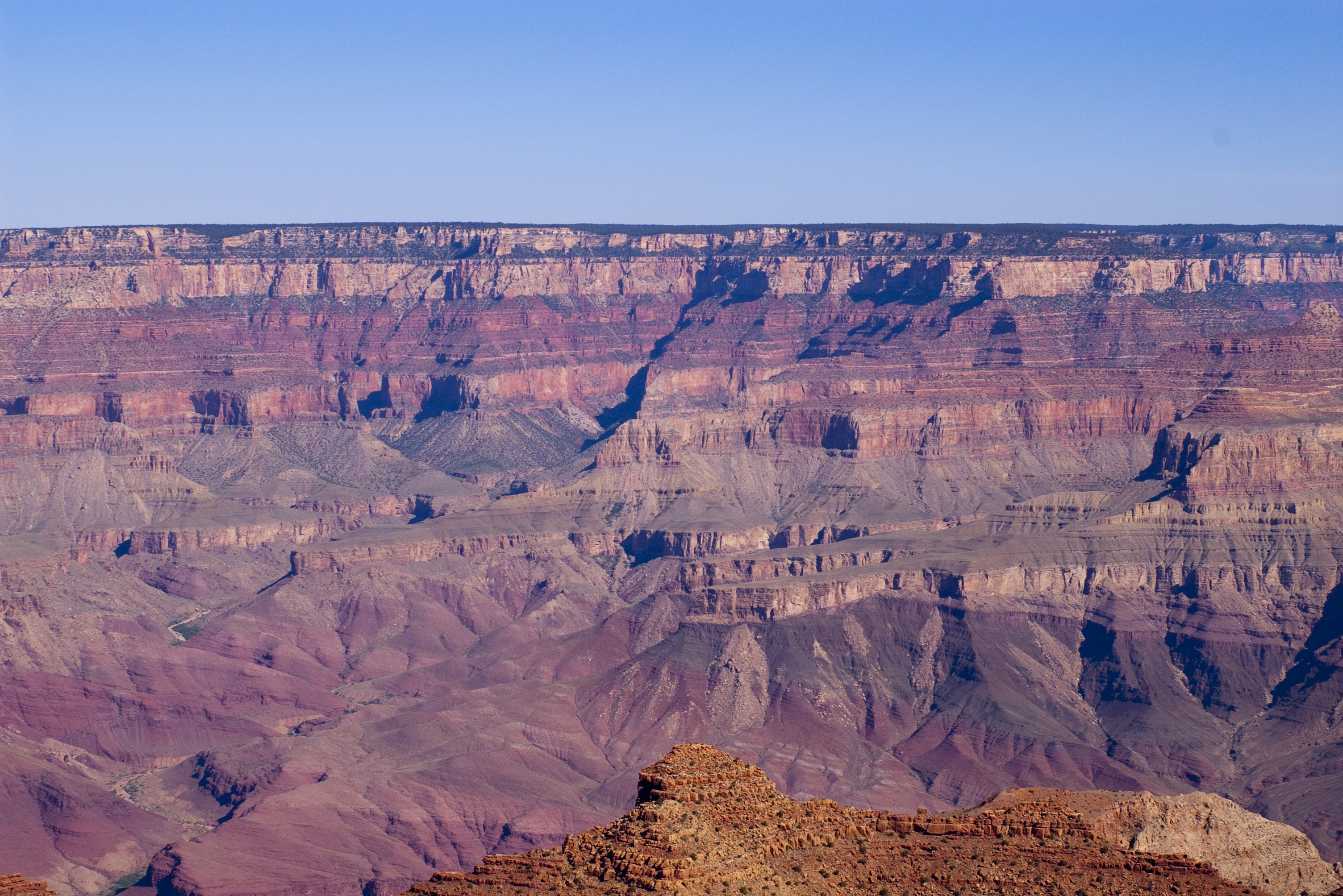 Free Stock Photo 3171 Panoramic Grand Canyon Freeimageslive