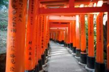 Free Stock 6138 Torii Gate Tunnel