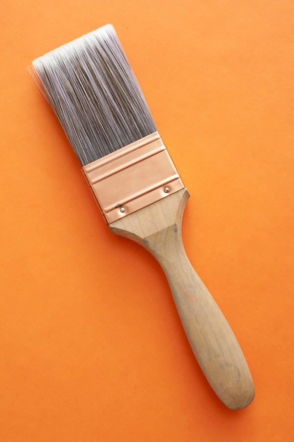Orange Paint Brush