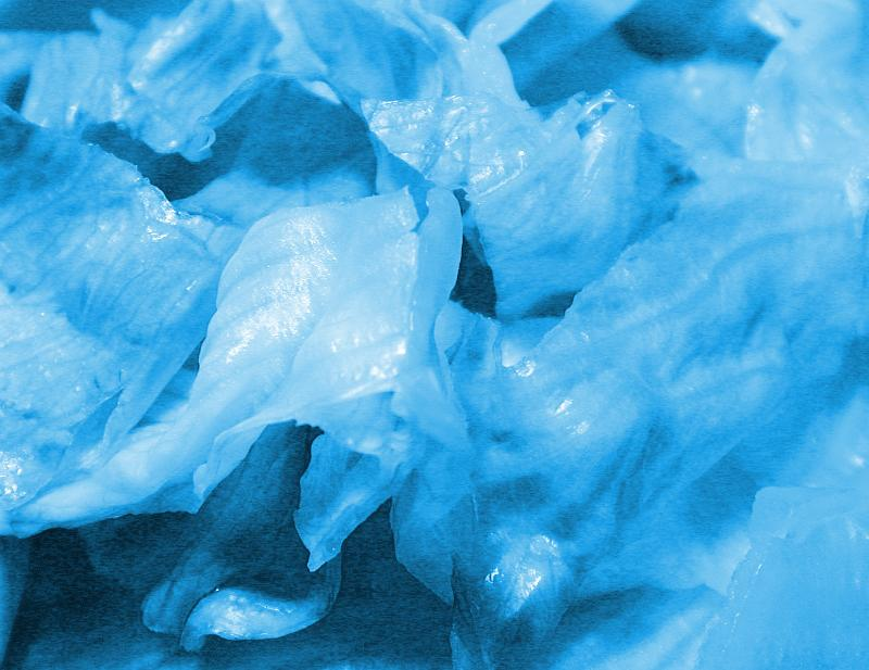 Free Stock Photo: Close up on lettuce shreds in blue color for abstract background of random natural appearance