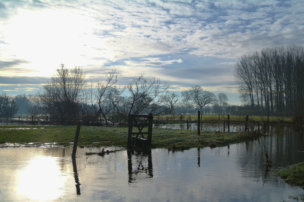 A flooded field - no crops can grow here