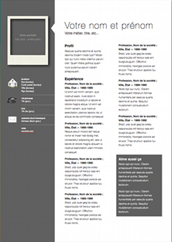 Professional Modern CV Template For Pages  Free iWork