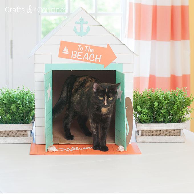 Beachy Pet House