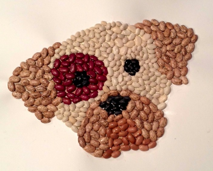 Dog Mosaic made from Beans.