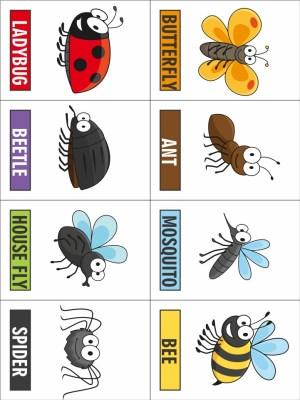 Image of Printable Bug Game