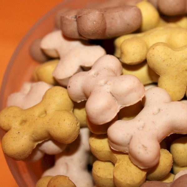 Homemade Dog Treats with Recipe