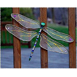 Image of Dragonfly Craft