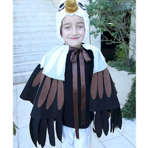 Image of Make An Eagle Costume