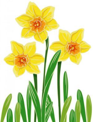 Image of Egg Carton Daffodils