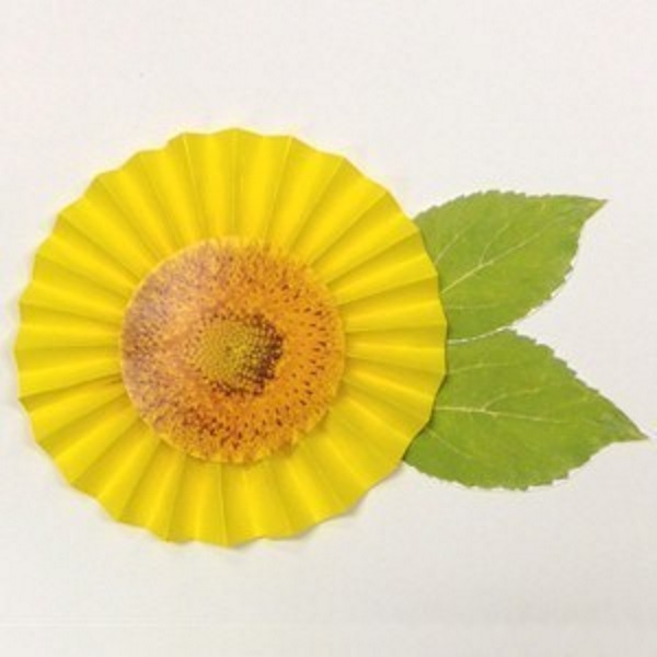 Sunflower created with yellow paper and folded into a fan shape
