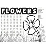 Image of Make Flower Coasters