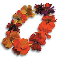Image of Flower Lei
