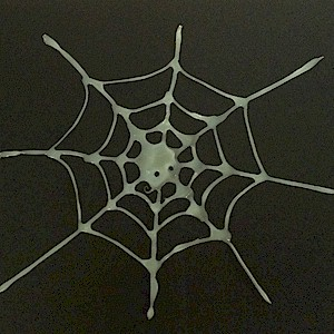 Halloween Spider Web Craft