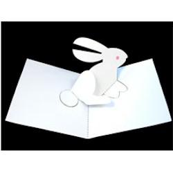 Image of Rabbit Pop UP