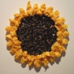 Image of Tissue Paper Flower
