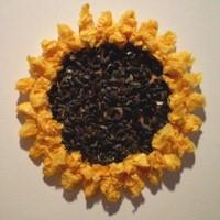Image of Tissue Paper Sunflower