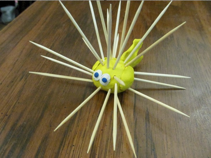 Toothpick Puffer Fish