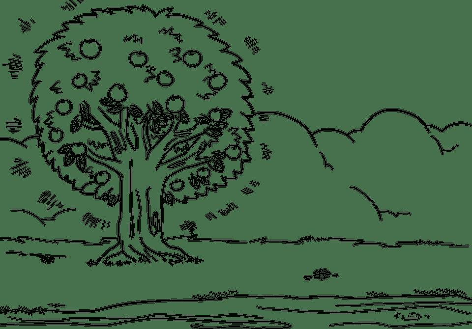 Storie bilingue, video e pagine da colorare per i bambini