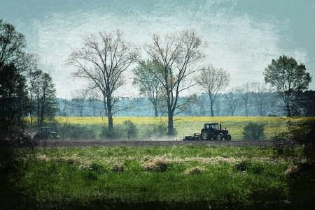 Krajobraz s traktorem, autor: Chris