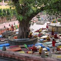 Čínský úřad pro dohled nad buddhismem vyhlásil radikální omezení tibetského buddhismu
