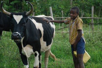 Kongo, foto ČvT