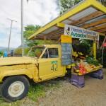 freemans_yellow_truck