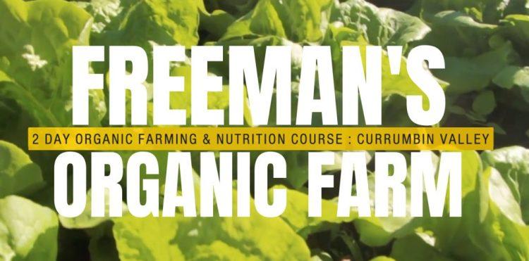 Freemans organic farm courses