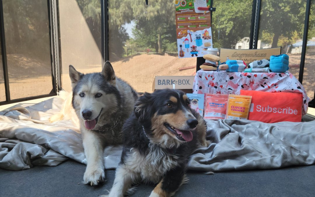 @Barkbox June 2021 unboxing and Review with Raffey and Tigger